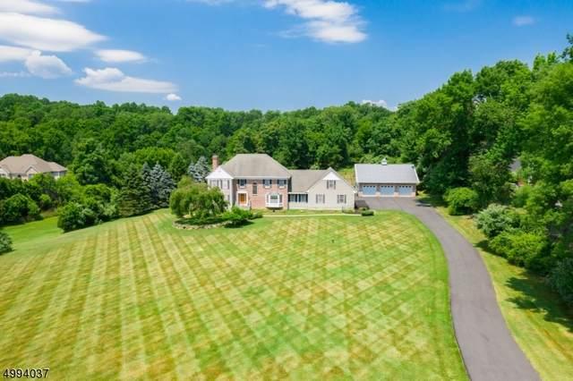 12 Green Farm Rd, Green Twp., NJ 07821 (MLS #3643982) :: Mary K. Sheeran Team