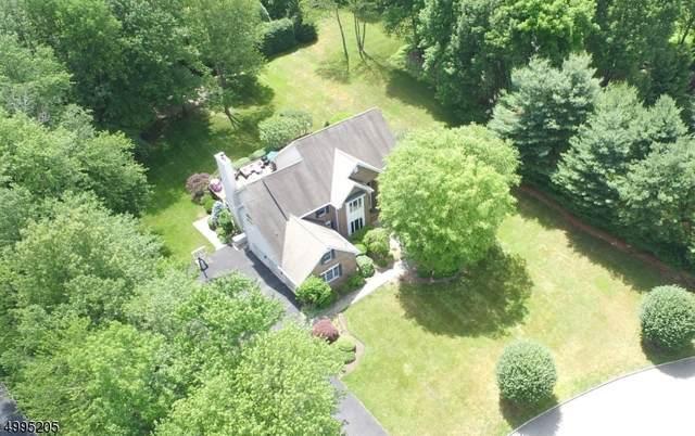 22 Small Brook Cir, Randolph Twp., NJ 07869 (MLS #3645203) :: The Lane Team