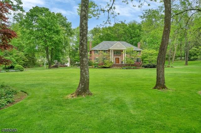 63 Millbrook Rd, Harding Twp., NJ 07976 (MLS #3645285) :: Coldwell Banker Residential Brokerage