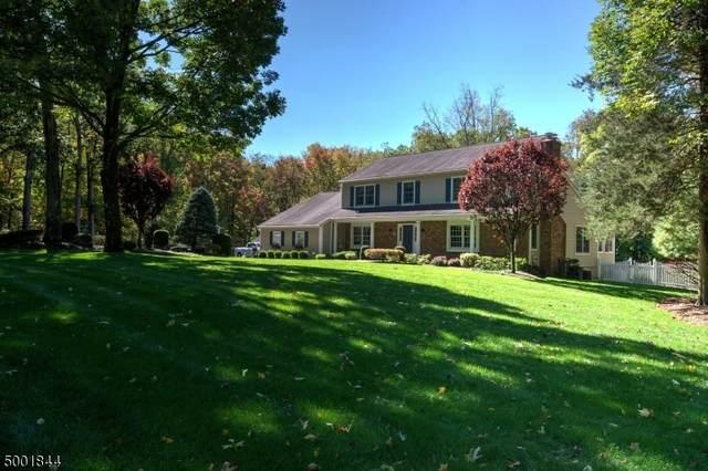 14 Dogwood Ln, Boonton Twp., NJ 07005 (MLS #3651217) :: SR Real Estate Group