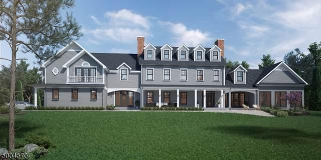 145 Thatchers Hill Rd, Raritan Twp., NJ 08822 (MLS #3653734) :: The Sikora Group