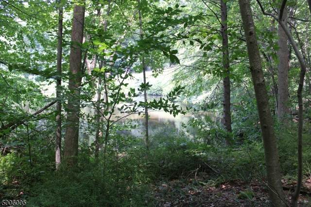 0 Reservoir Rd, Washington Twp., NJ 07840 (MLS #3654693) :: Pina Nazario