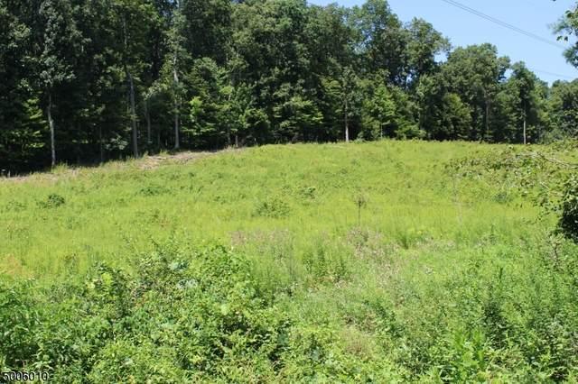 28 Mine Hill Rd, Mount Olive Twp., NJ 07840 (MLS #3654700) :: William Raveis Baer & McIntosh