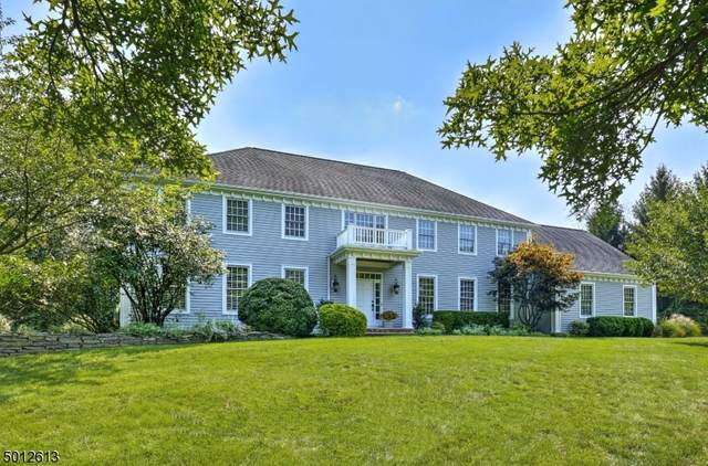 9 Forest View Dr, Chester Twp., NJ 07930 (MLS #3663968) :: Pina Nazario