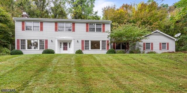 359 Route 513, Lebanon Twp., NJ 07830 (MLS #3668811) :: Team Braconi | Christie's International Real Estate | Northern New Jersey