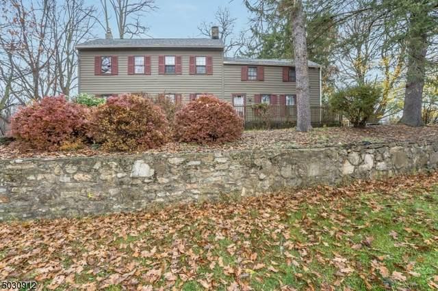 490 Mine Rd, Bethlehem Twp., NJ 08827 (MLS #3677267) :: The Sikora Group