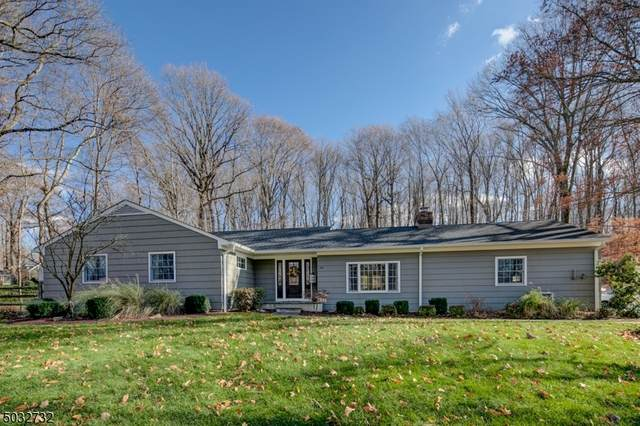105 Seney Drive Ext, Bernardsville Boro, NJ 07924 (MLS #3678939) :: RE/MAX Select
