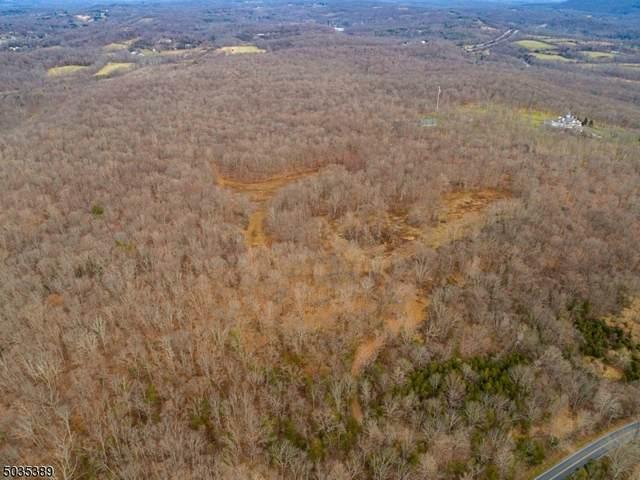 354 Mount Hermon Rd, Hope Twp., NJ 07844 (MLS #3681832) :: Team Francesco/Christie's International Real Estate