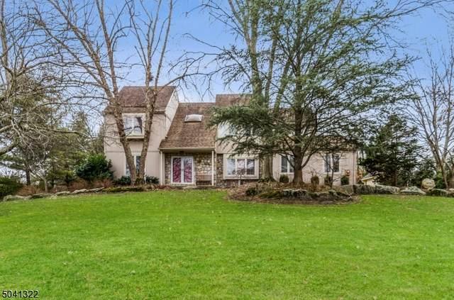 10 Oak Hill Rd, Branchburg Twp., NJ 08853 (MLS #3686570) :: SR Real Estate Group
