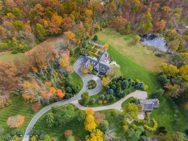 121 Lees Hill Rd, Harding Twp., NJ 07920 (MLS #3691877) :: SR Real Estate Group