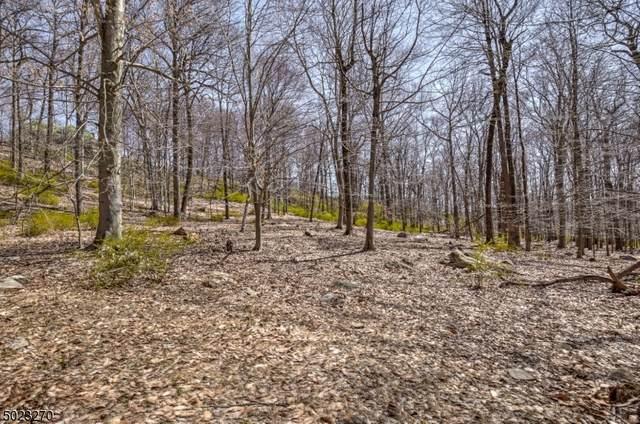 191 Douglass Ave, Bernardsville Boro, NJ 07924 (#3696776) :: Rowack Real Estate Team
