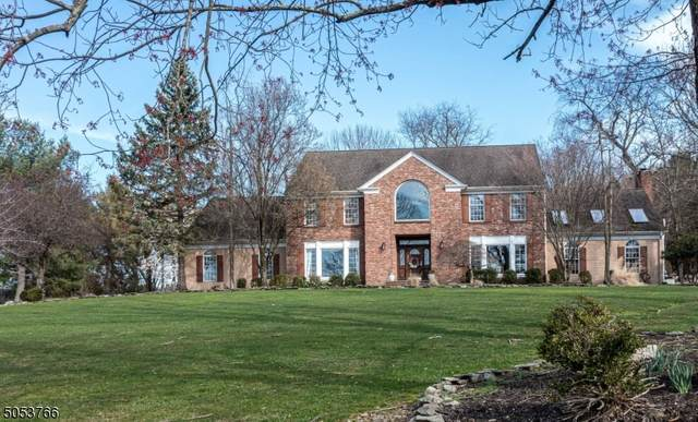 4 White Tail Way, Clinton Twp., NJ 08801 (MLS #3697255) :: The Debbie Woerner Team