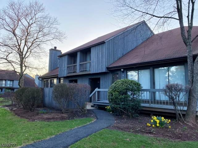 247 Gemini Dr 1B, Hillsborough Twp., NJ 08844 (MLS #3701087) :: The Sue Adler Team