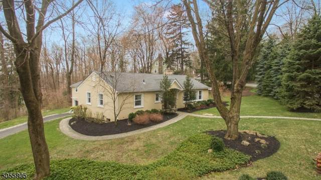 78 Laurel Hill Rd, Mountain Lakes Boro, NJ 07046 (MLS #3702064) :: RE/MAX Platinum