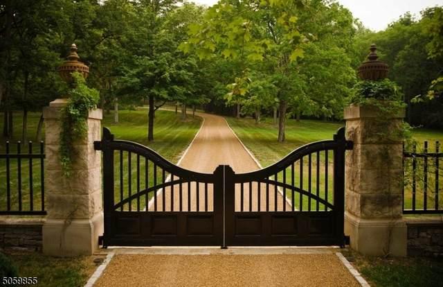 3 Aleksandra Lane, Bedminster Twp., NJ 07921 (MLS #3702168) :: Kiliszek Real Estate Experts