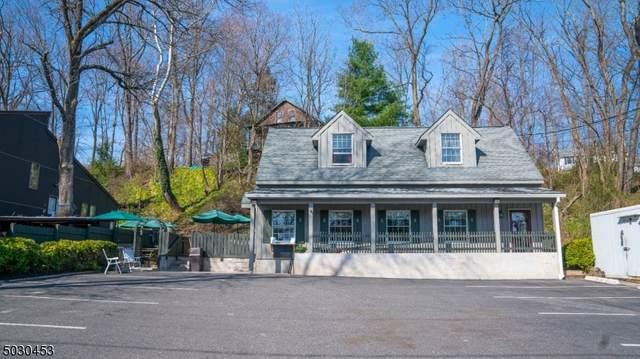 10 Risler St, Stockton Boro, NJ 08559 (MLS #3702907) :: Team Braconi | Christie's International Real Estate | Northern New Jersey
