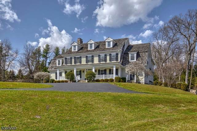 9 Twin Field Lane, Harding Twp., NJ 07976 (MLS #3703148) :: The Michele Klug Team | Keller Williams Towne Square Realty