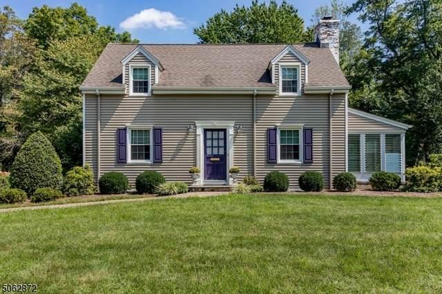 19 Pitney Ave, New Providence Boro, NJ 07974 (MLS #3704649) :: SR Real Estate Group