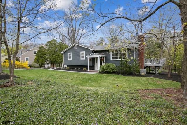 115 Division Ave, Long Hill Twp., NJ 07946 (MLS #3704674) :: SR Real Estate Group