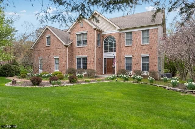 10 Farrow Lane, Bethlehem Twp., NJ 08802 (MLS #3707550) :: Coldwell Banker Residential Brokerage