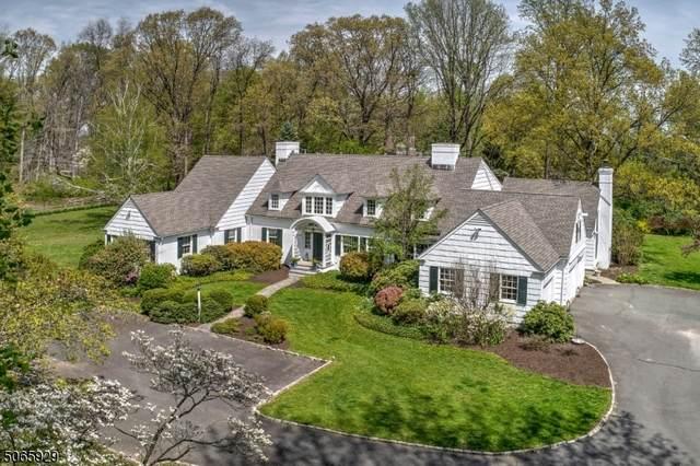 227 Blue Mill Rd, Harding Twp., NJ 07960 (MLS #3708422) :: The Debbie Woerner Team