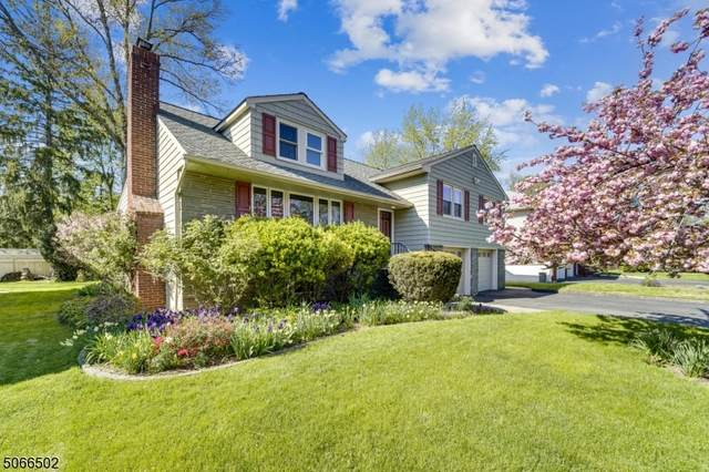 5 Madison Ave, Cranford Twp., NJ 07016 (#3708492) :: Daunno Realty Services, LLC