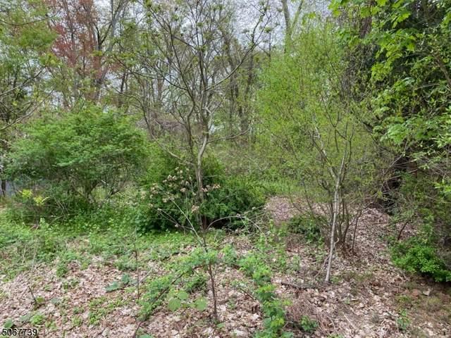 8 3rd St, Mount Olive Twp., NJ 07828 (MLS #3709440) :: Kiliszek Real Estate Experts