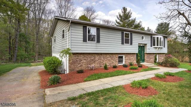 469 Mount Hope Rd, Rockaway Twp., NJ 07885 (MLS #3709758) :: Kaufmann Realtors