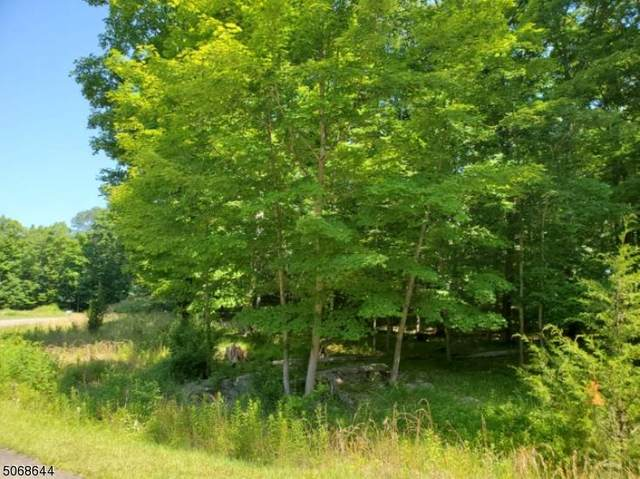 8 Eileens Way, Andover Twp., NJ 07860 (MLS #3710445) :: Corcoran Baer & McIntosh