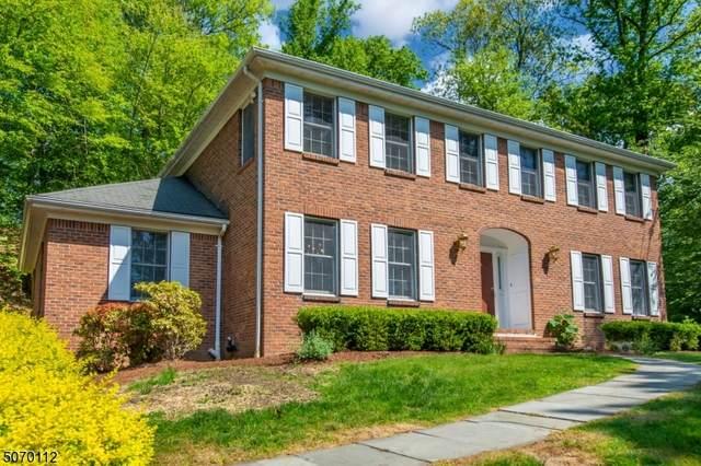 110 Chestnut Ave, Bernardsville Boro, NJ 07924 (MLS #3711053) :: The Sue Adler Team