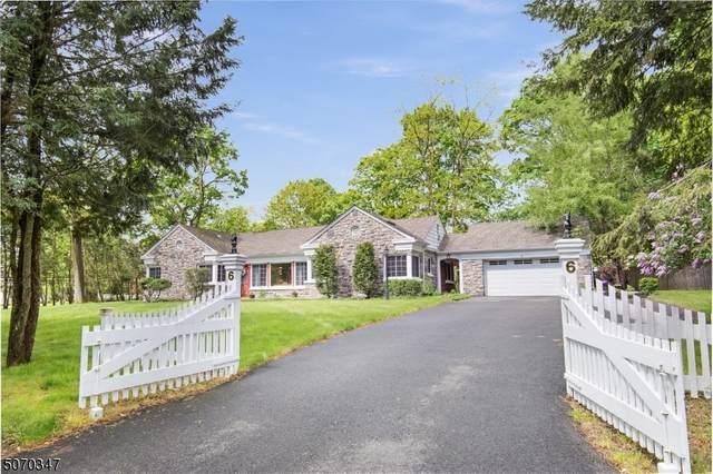 6 Sun Valley Way, Morris Plains Boro, NJ 07950 (MLS #3711162) :: SR Real Estate Group