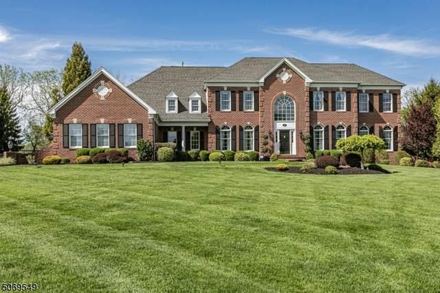 94 Bronson Way, Montgomery Twp., NJ 08558 (MLS #3711606) :: Kiliszek Real Estate Experts