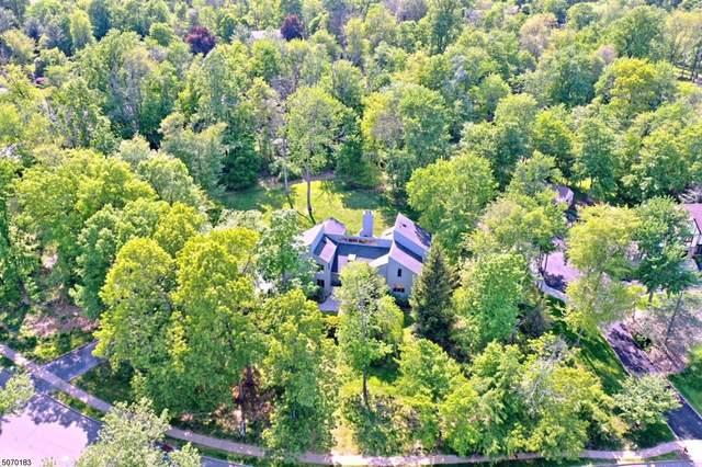 1047 Tullo Farm Rd, Bridgewater Twp., NJ 08807 (MLS #3713965) :: Corcoran Baer & McIntosh