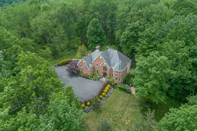 206 Taylors Mill Rd, Readington Twp., NJ 08833 (MLS #3713979) :: Gold Standard Realty