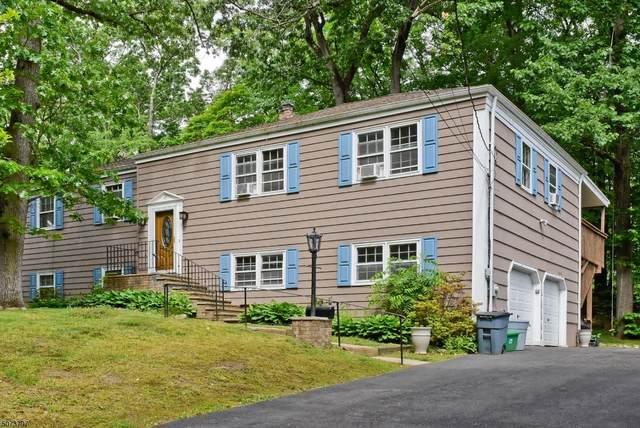 49 Woodland Ave, Mountain Lakes Boro, NJ 07046 (MLS #3714443) :: SR Real Estate Group
