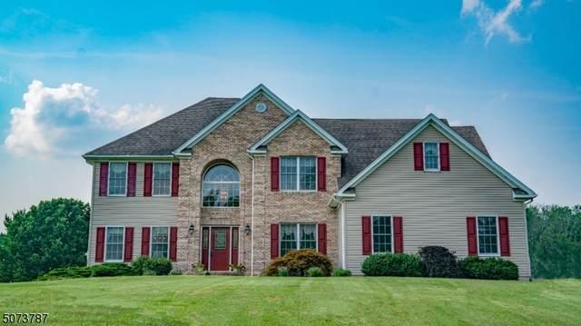 119 Back Brook Rd, East Amwell Twp., NJ 08551 (MLS #3725402) :: The Dekanski Home Selling Team