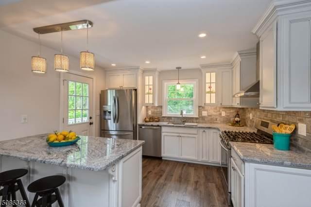 717 Kline Pl, Bridgewater Twp., NJ 08807 (MLS #3726119) :: Zebaida Group at Keller Williams Realty