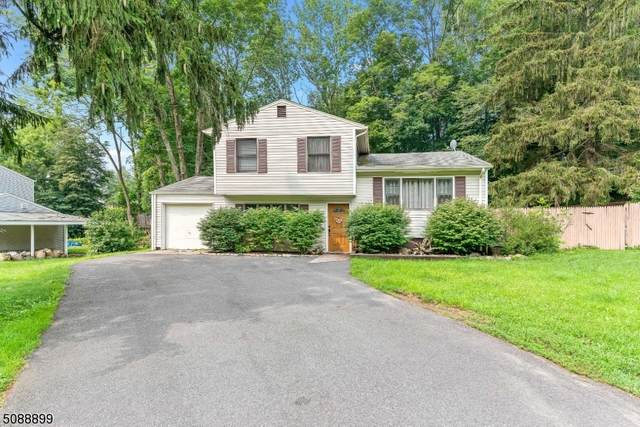 30 Dell Rd, Stanhope Boro, NJ 07874 (MLS #3728166) :: Kaufmann Realtors