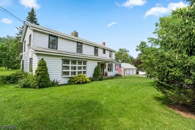 96 Brink Rd, Wantage Twp., NJ 07461 (MLS #3728756) :: The Dekanski Home Selling Team