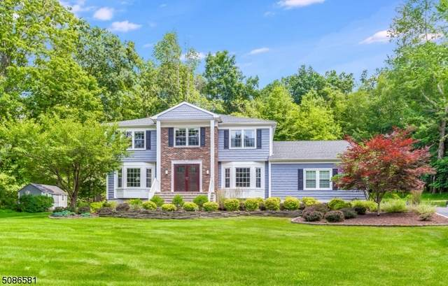 14 Schindler Dr, Roxbury Twp., NJ 07876 (MLS #3729121) :: SR Real Estate Group