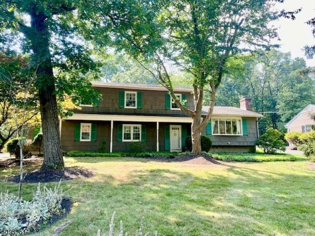 1057 Rector Rd, Bridgewater Twp., NJ 08807 (MLS #3734474) :: Team Braconi | Christie's International Real Estate | Northern New Jersey