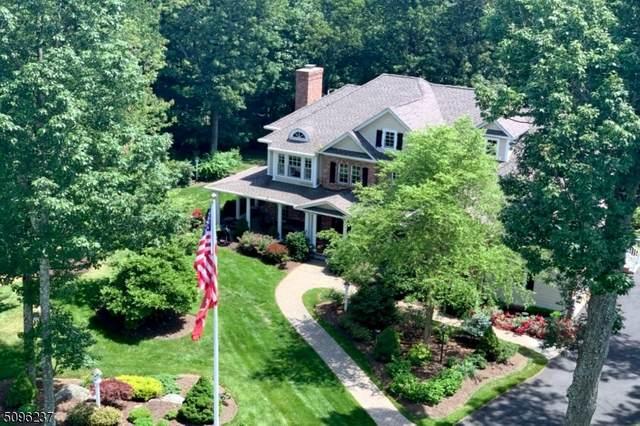 1 Boulder Ct, Boonton Twp., NJ 07005 (#3734973) :: NJJoe Group at Keller Williams Park Views Realty
