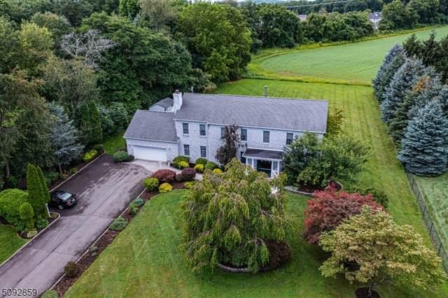 127 Smithtown Rd Budd Lake, Mount Olive Twp., NJ 07840 (MLS #3735971) :: Stonybrook Realty