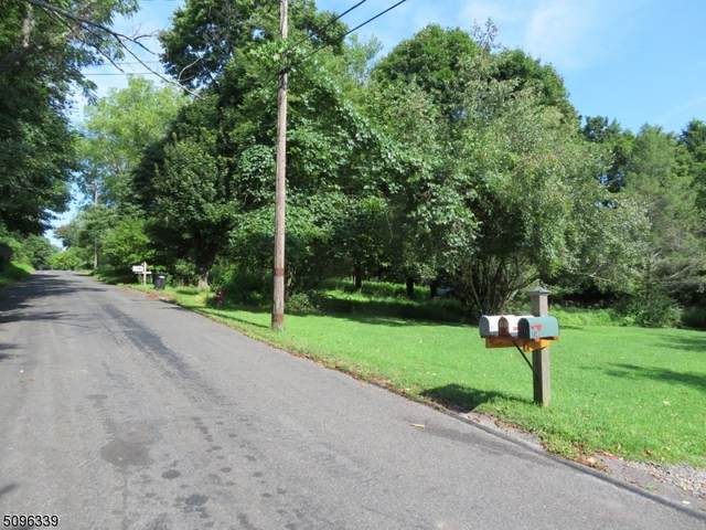 107 Orchard Lane, Bethlehem Twp., NJ 08827 (MLS #3736080) :: Kiliszek Real Estate Experts