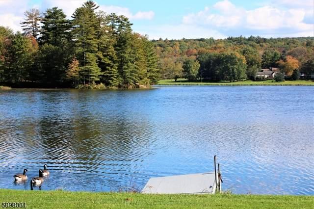 440 Lake Shore Drive North D, Montague Twp., NJ 07827 (MLS #3736139) :: The Michele Klug Team | Keller Williams Towne Square Realty