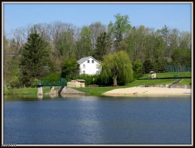 951 West  End Dr, Stillwater Twp., NJ 07860 (#3736145) :: Rowack Real Estate Team
