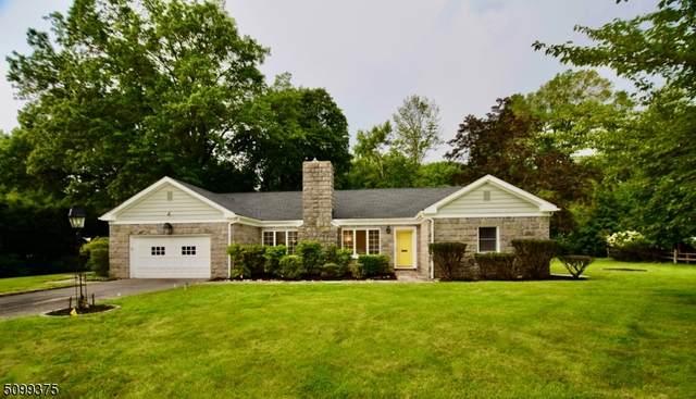 26 Sun Valley Way, Morris Plains Boro, NJ 07950 (MLS #3737423) :: SR Real Estate Group