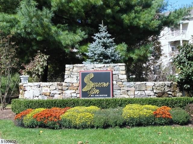 25 Birch Ter, Mount Arlington Boro, NJ 07856 (MLS #3738425) :: SR Real Estate Group