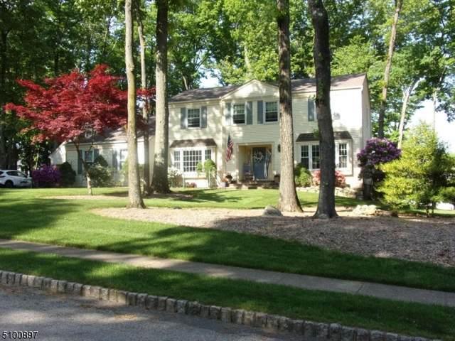 1 Aspen Pl, Washington Twp., NJ 07853 (MLS #3738497) :: SR Real Estate Group
