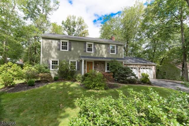 15 Macleay Rd, Montville Twp., NJ 07045 (#3738670) :: Rowack Real Estate Team